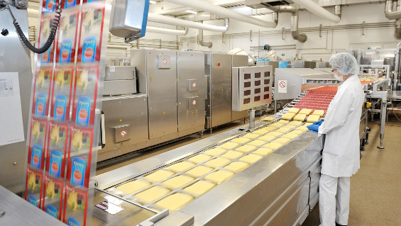 Finding Success with Your Food Packaging Endeavors