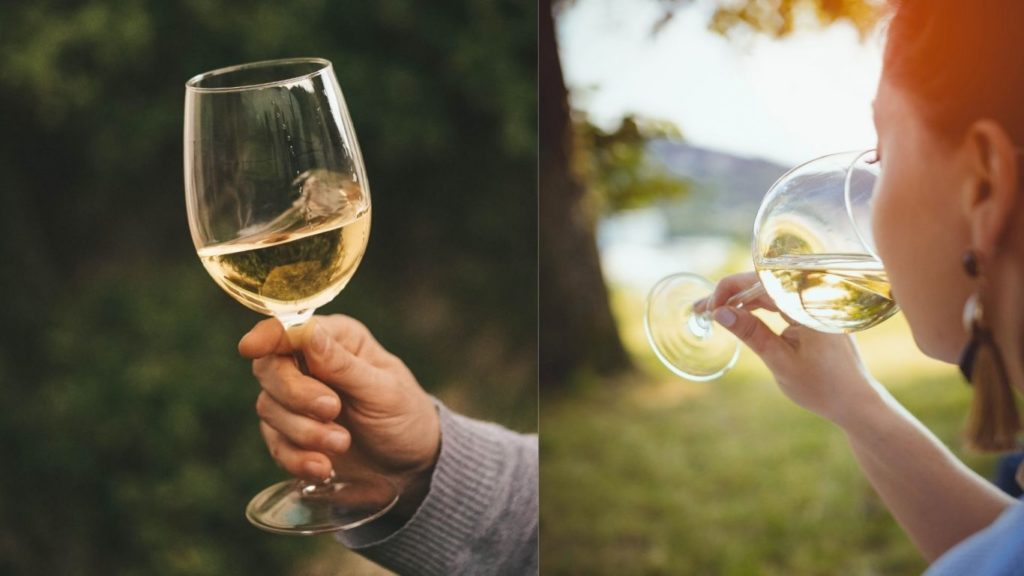 Why Popularity of White Wine Is Increasing Day by Day